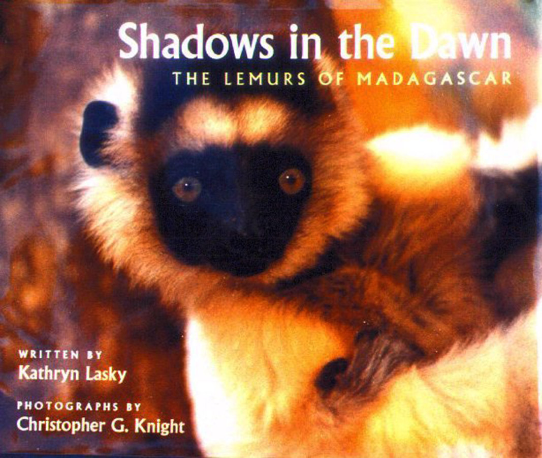 Shadows in the Dawn: The Lemurs of Madagascar Cover
