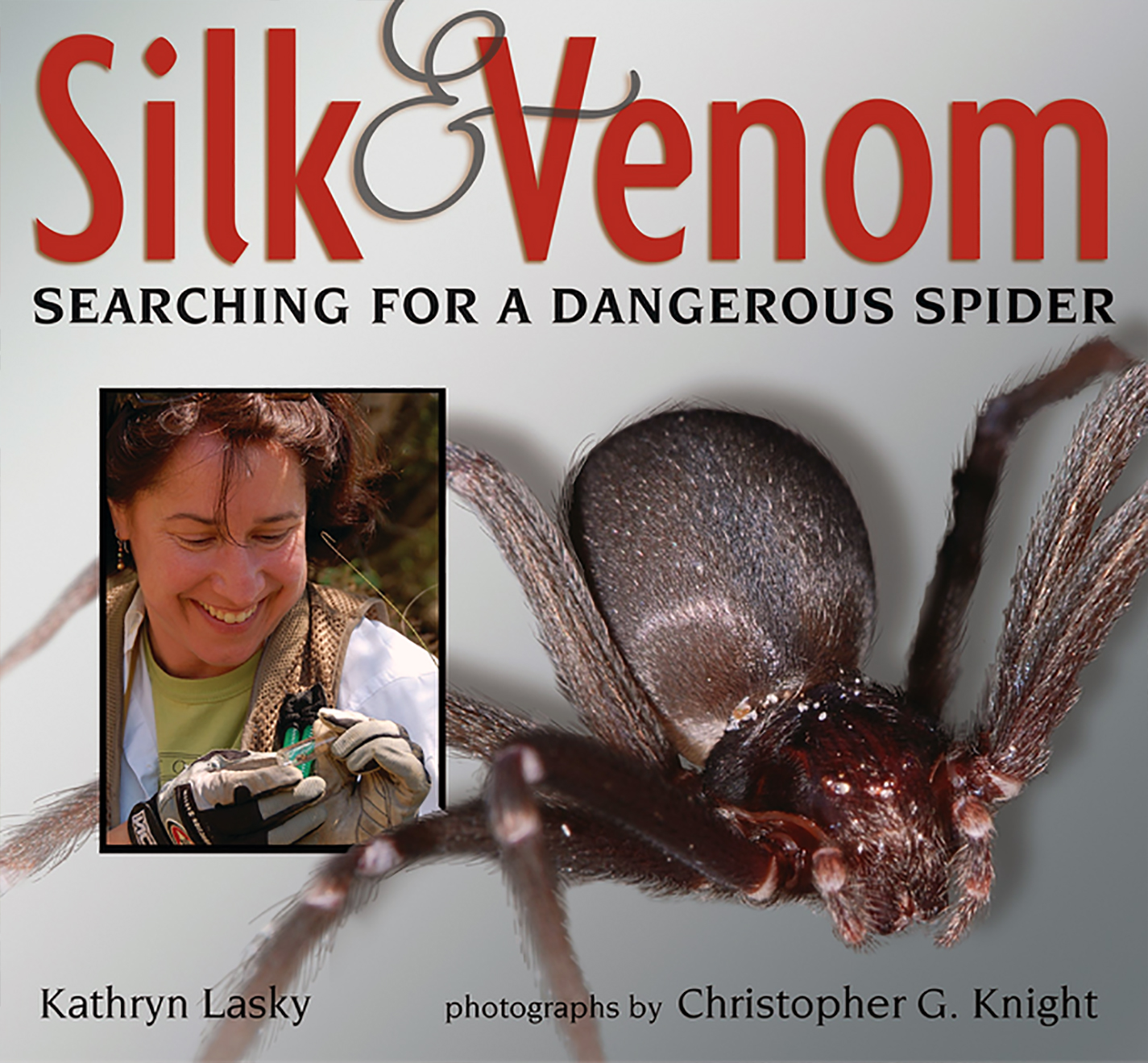 Silk & Venom, Searching for a Dangerous Spider