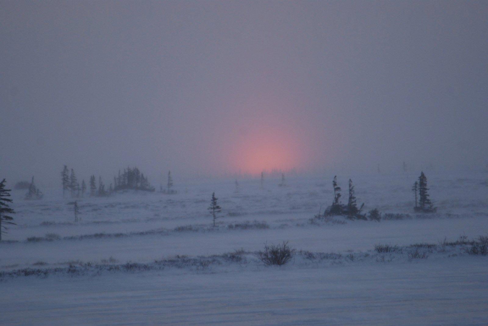 Tundra  dawn