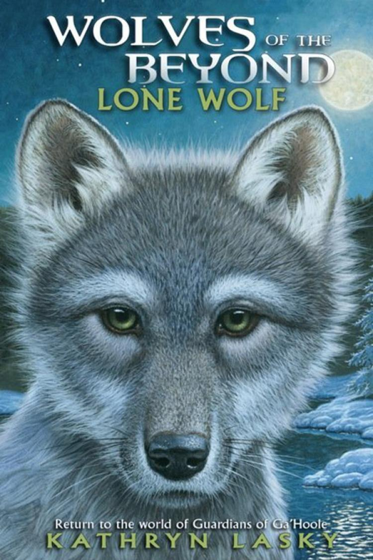 Reviews of Lone Wolf