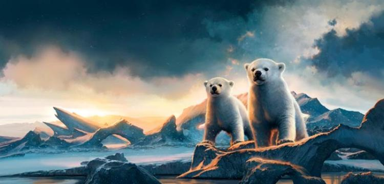 Scholastic Website Launched for Bears of the Ice